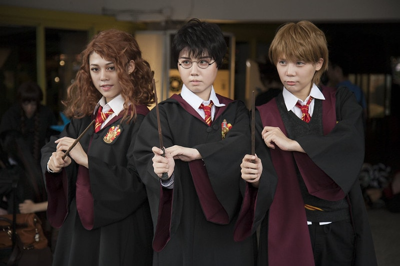 Harry Potter (cosplay ideas for groups)